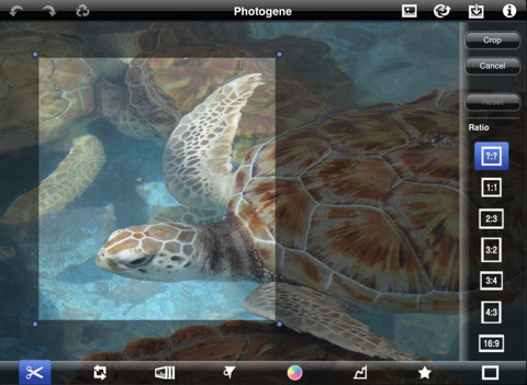 photogene for ipad review best apple ipad photography app crop