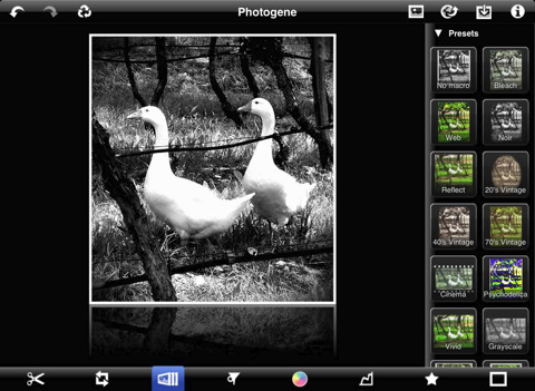 photogene for ipad review best apple ipad photography app edit
