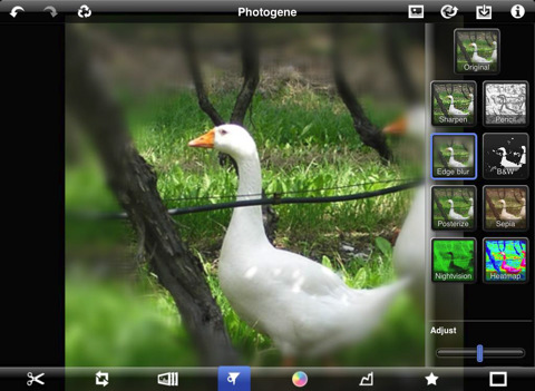 photogene for ipad review best apple ipad photography app filter